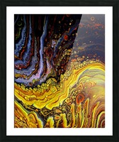 Fossil Amber Picture Frame print