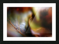 Abstract Mystic and Colourful Leaf 01 Picture Frame print