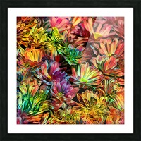 Rainbow Floral Picture Frame print