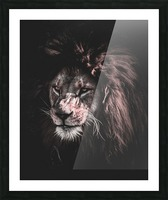 lion painting Picture Frame print