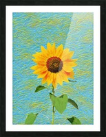 Sunflower. Picture Frame print