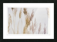 Tall Grass Picture Frame print