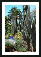 Giant Cacti Jardin Majorelle Marrakech Picture Frame print