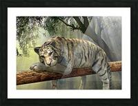 tiger animal jungle rainforest Picture Frame print