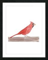 Cardinal Picture Frame print