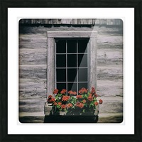 Window of Flowers Picture Frame print