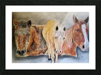 three horses Picture Frame print