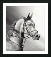 ARABIAN BEAUTY Picture Frame print