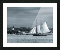 Harbor Cruise Picture Frame print