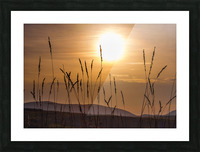 Colebrook Afternoon Picture Frame print