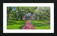 Oak Alley Plantation - HDR Picture Frame print
