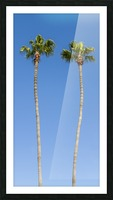 Idyllic Palm trees Picture Frame print