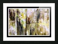 Mystical Swamp - Georgia Okeffe Effect - White and Black  Borders Picture Frame print
