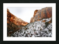 Zion National Park 1 Picture Frame print