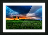 Florida Sunset Picture Frame print