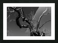 Metal tree Picture Frame print