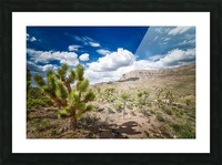 Arizona Desert  Picture Frame print