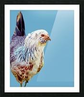 chicken pop art blue Picture Frame print