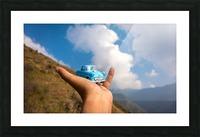 DSC_8574 Picture Frame print