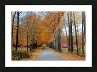 Autumn Three Maple Dr. Manchester VT Picture Frame print