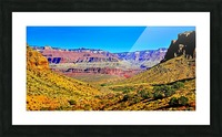 Grand Canyon  Bright Angel Trail 15 Picture Frame print