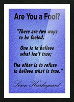 2-Are You a Fool  Picture Frame print