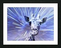 Giraffe pop 2   Picture Frame print