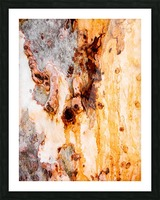 Ghost Gum Bark - 4 Picture Frame print