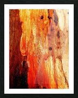 Murray Gum Tree Bark 2 Picture Frame print