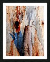 Murray Gum Tree Bark 5 Picture Frame print