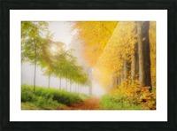 Autumn Colors Picture Frame print