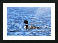 Spirit Of Northern Lakes Picture Frame print