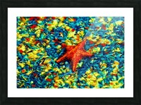 Ocean Life Picture Frame print