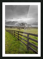 Melancholic Picture Frame print