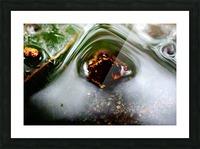 Macro Raindrop Photography Art 45 Picture Frame print