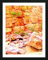 Surviving - Ormiston Gorge Picture Frame print