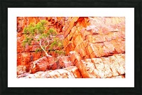 Pink Delight - Ormiston Gorge Picture Frame print