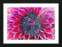 Red flower and Green Picture Frame print