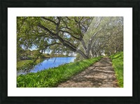 By the river Picture Frame print