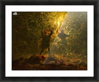 Hunting Birds at Night Picture Frame print