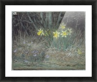 Narcissi and Violets Picture Frame print