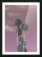 Palm trees in summer Picture Frame print