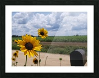 Dirt road views Picture Frame print