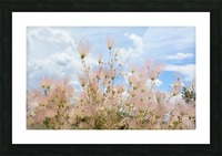 Pink Flora New Mexico Photograph Picture Frame print