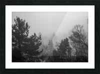 Foggy Forest Picture Frame print
