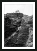 The path Picture Frame print
