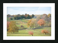 Fall Foliage In Virginia Photograph Picture Frame print