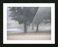 Soft Snow Fall Photograph Picture Frame print