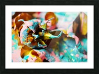 Painted Roses.10 Picture Frame print