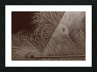 Full Bloom Sepia Picture Frame print